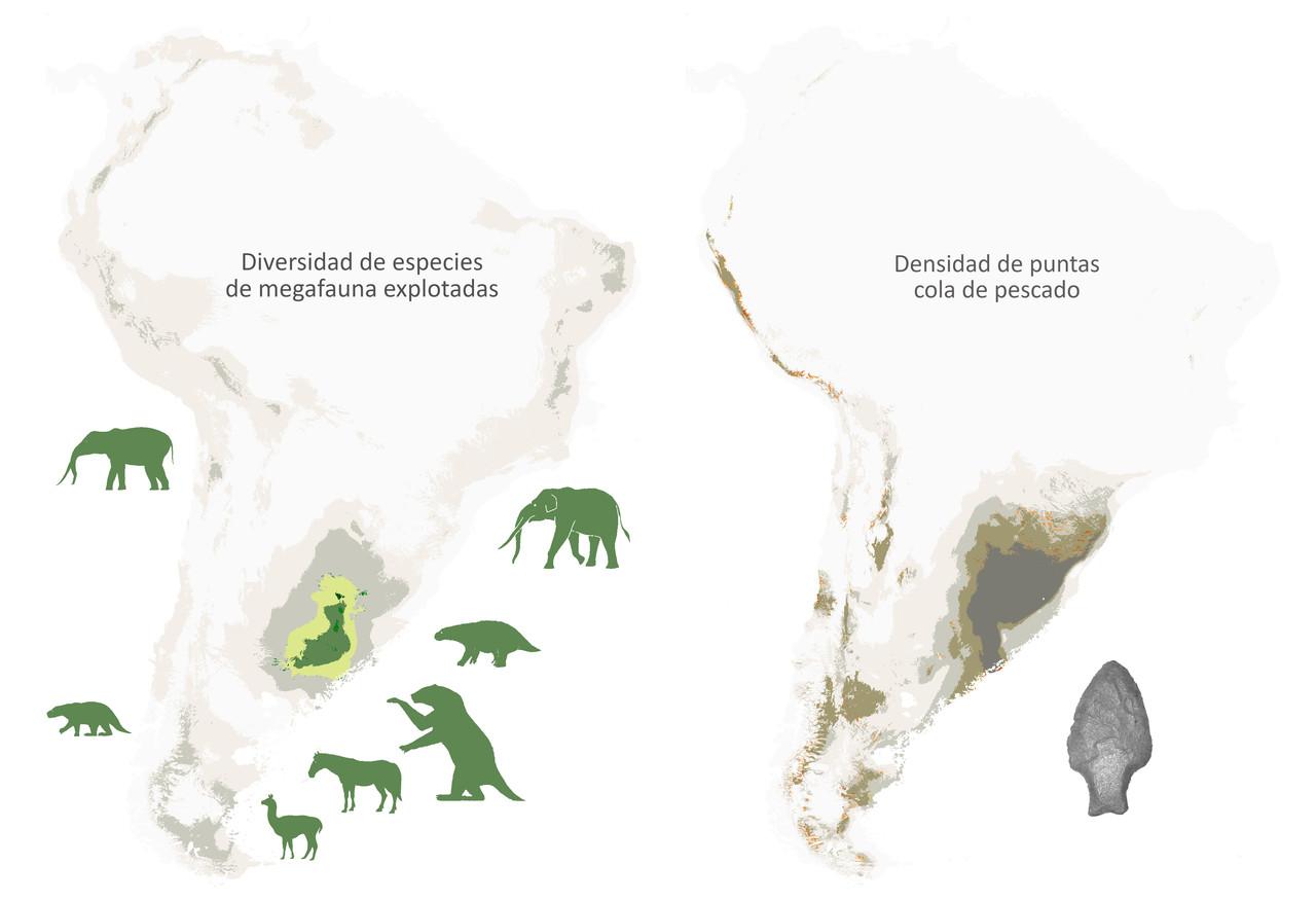 Aseguran que la depredación humana habría causado la extinción de la megafauna Sudamericana del Pleistoceno