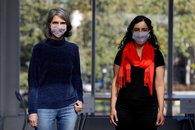 Con un modelo matemático, estudian la coinfección simultánea con dengue y COVID-19